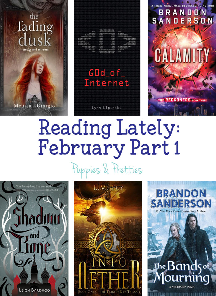 Reading Lately: reviews of The Fading Dusk by Melissa Giorgio, God of Internet by Lynn Lipinski, Calamity by Brandon Sanderson, Shadow and Bone by Leigh Bardugo, Into Aether by L.M. Fry, The Bands of Mourning by Brandon Sanderson   Puppies & Pretties